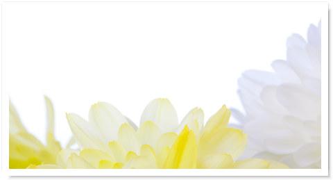 Voetreflex&aromatherapie